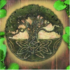 Curso Magia Elemental - A Evolução do Ser