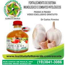 Terapia Fortalecimento Sistema Imunologico e Combates  Patologicos Gratuito