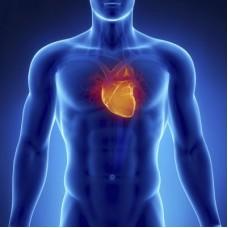 Curso Ozonioterapia Cardio Vascular